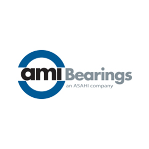 ami bearings (1)